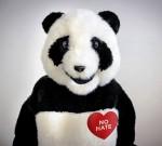 panda no hate