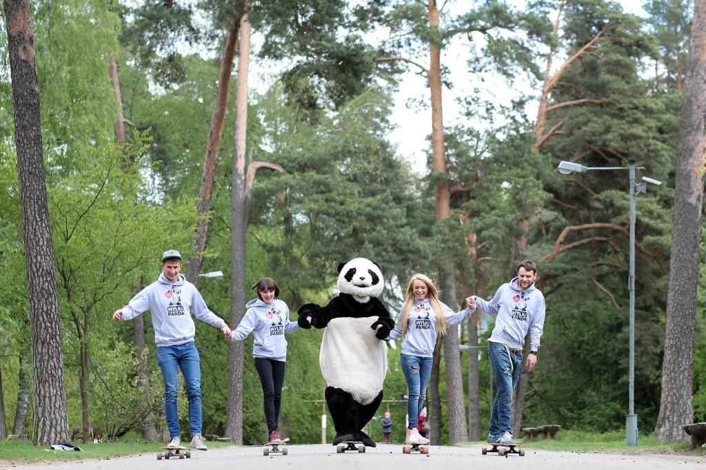 panda grizta